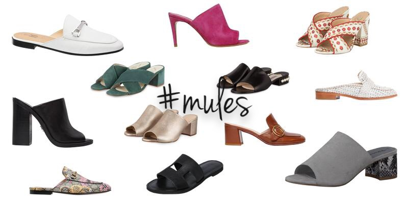 Aktueller Trend Mules Swanted Magazine
