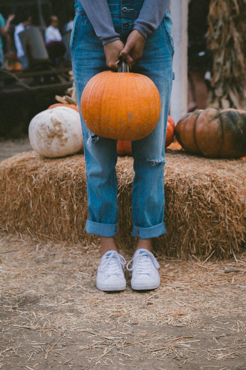 Herbst-Beauty-Kürbis-Schönmacher-Tipps_Tricks-Swanted